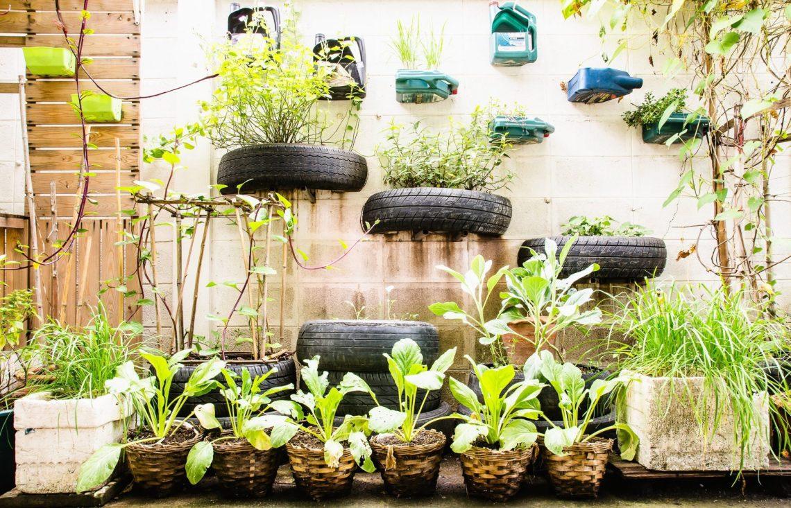 stock-photo-garden-in-urban-at-sukumwit-bangkok-360954980-1920x1235